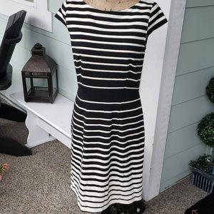 LOFT  striped dress size 6 nwot